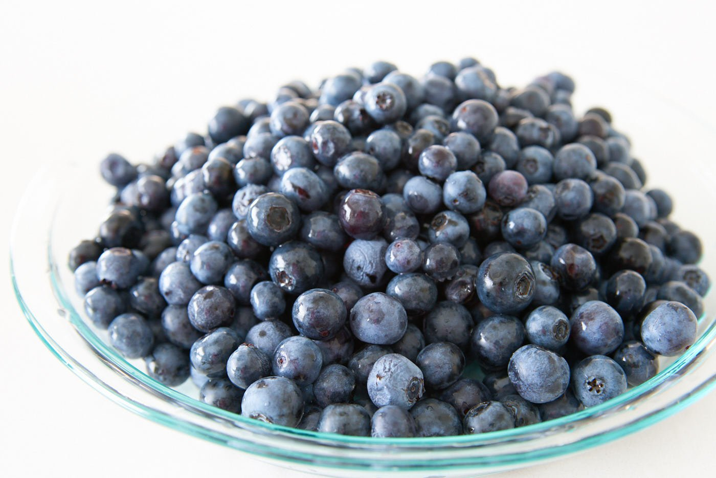 Big haul of freshly picked blueberries in a pie plate is a good way to start cobbler.